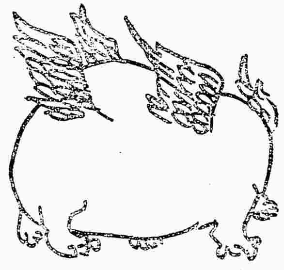 动物影子小兔子简笔画